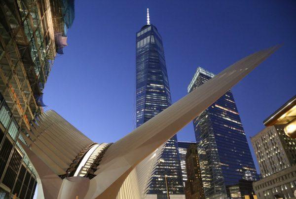 WTC - curio pack